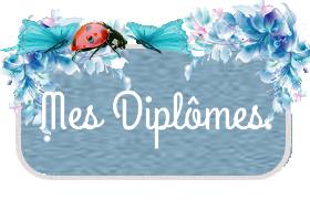 Mes Diplomes