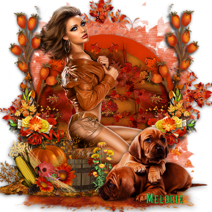 Scrap automne 2