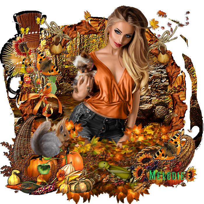 Scrap automne 3
